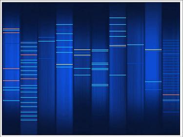 Web2DNA skin